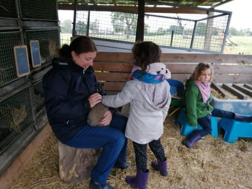 La ferme: s'occuper des lapins.